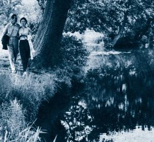 David and Hjördis Niven, 1954