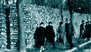 Wood piled in the streets of Stockhom, 1944
