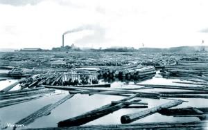 Vivstavarv sawmill